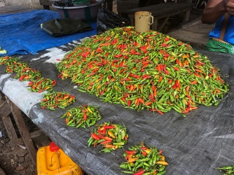 Peppers and more Peppers