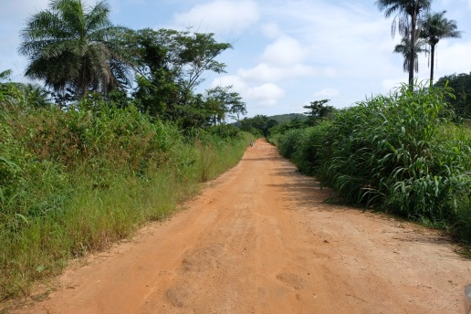 The road to Tongo